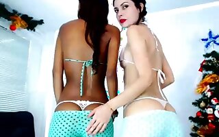 Very Hot Crude Swarthy Teen Couple Fuck on Webcam